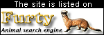 Furty, the animal search engine
